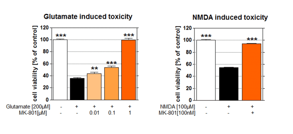 excitotoxicity-figure_Glutamate-and-NMDA-induced-toxicity
